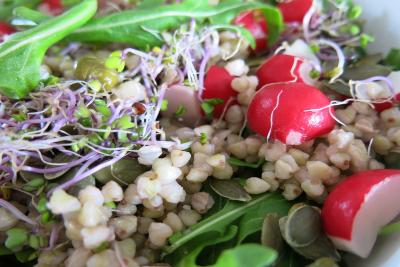 Dietética Naturista Empresas - OnLine